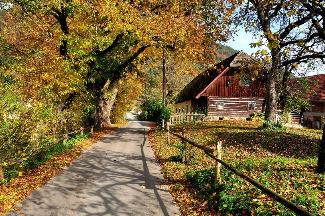 A Country Farmhouse