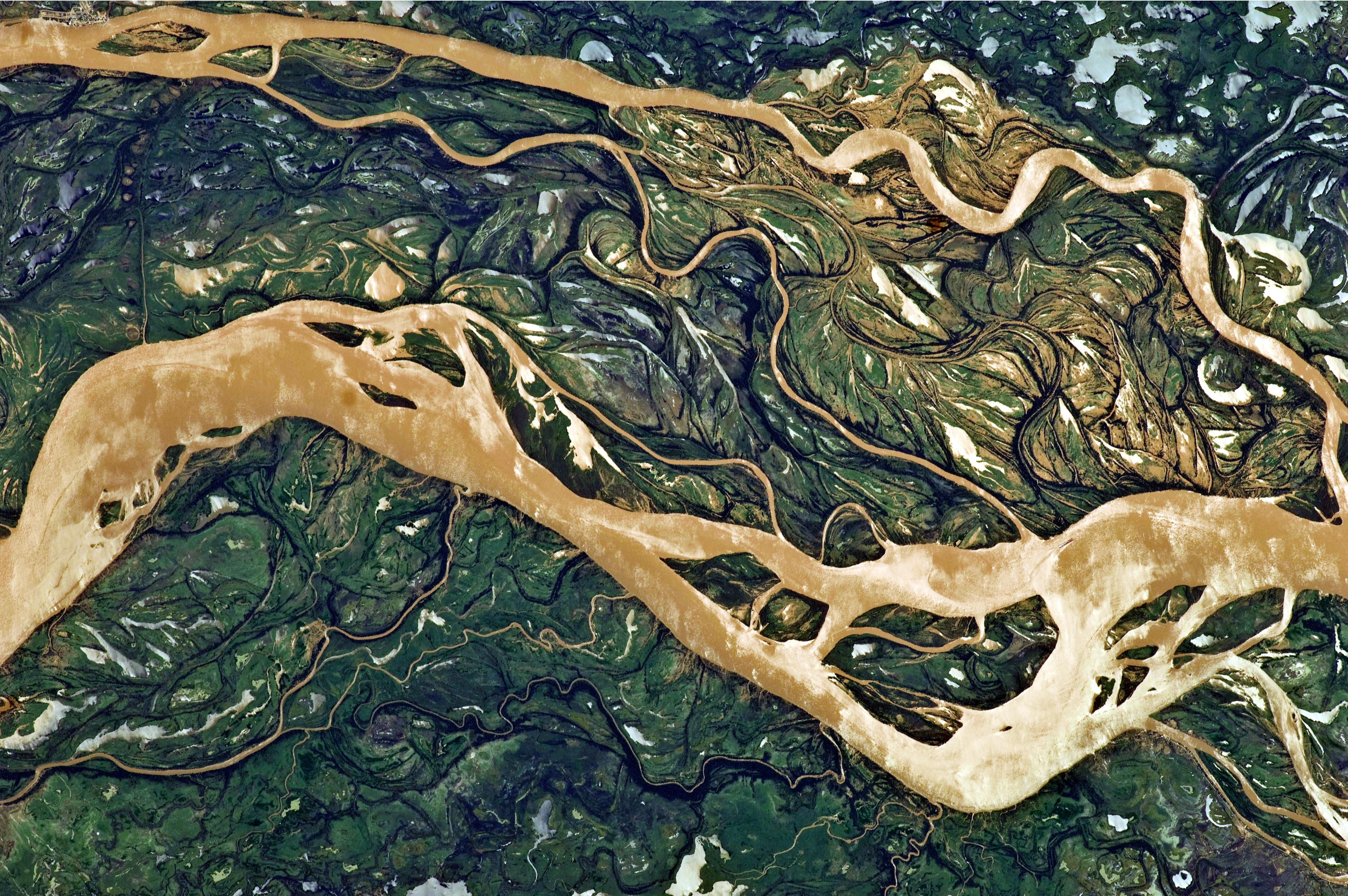File Parana River Floodplain Northern Argentina