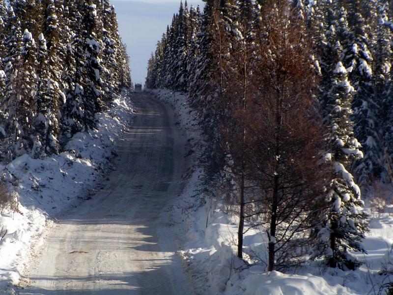 Winter Road Wikipedia