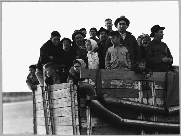 File Eloy Pinal County Arizona. Truck-load Of Cotton Pickers Pulled Town In