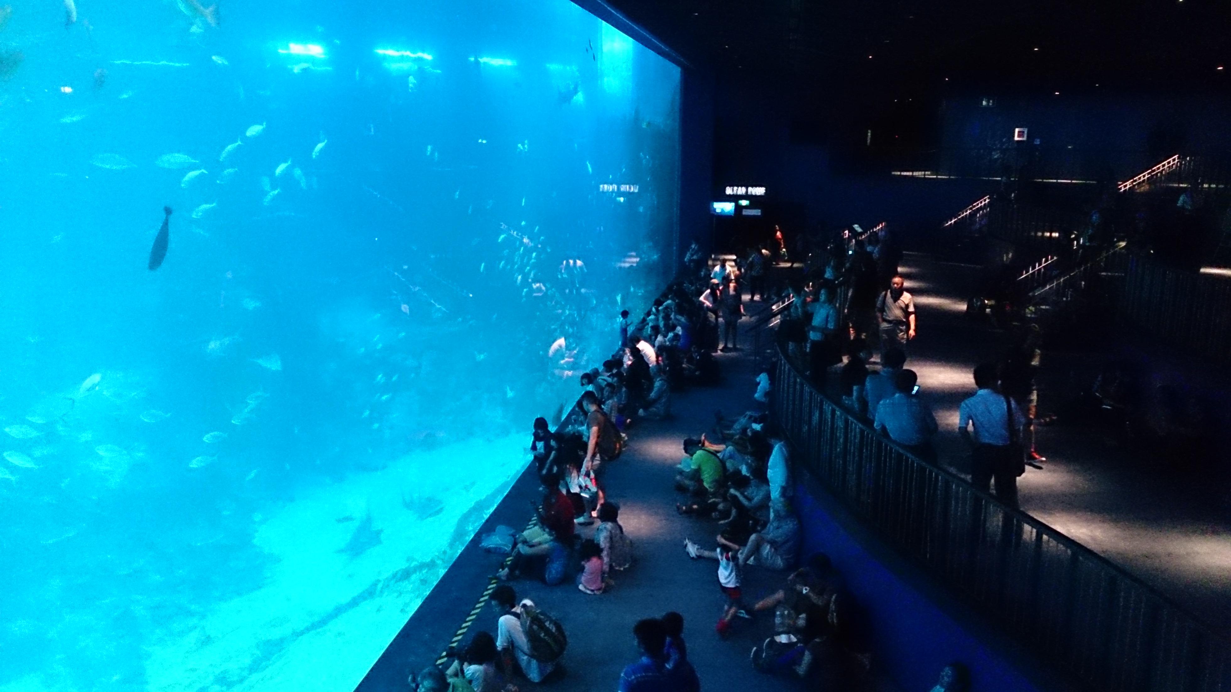 marine life park wikipedia