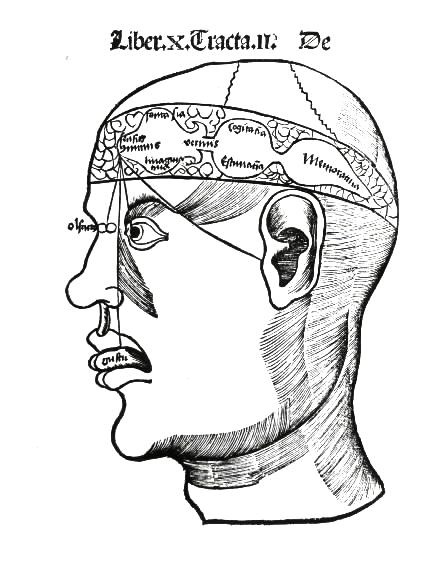 Processus (psychologie) — Wikipédia