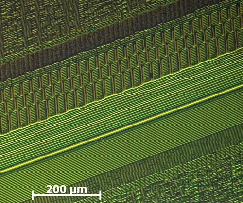 File:Aufnahme einzelner Magnetisierungen gespeicherter Bits auf einem Festplatten-Platter..jpg