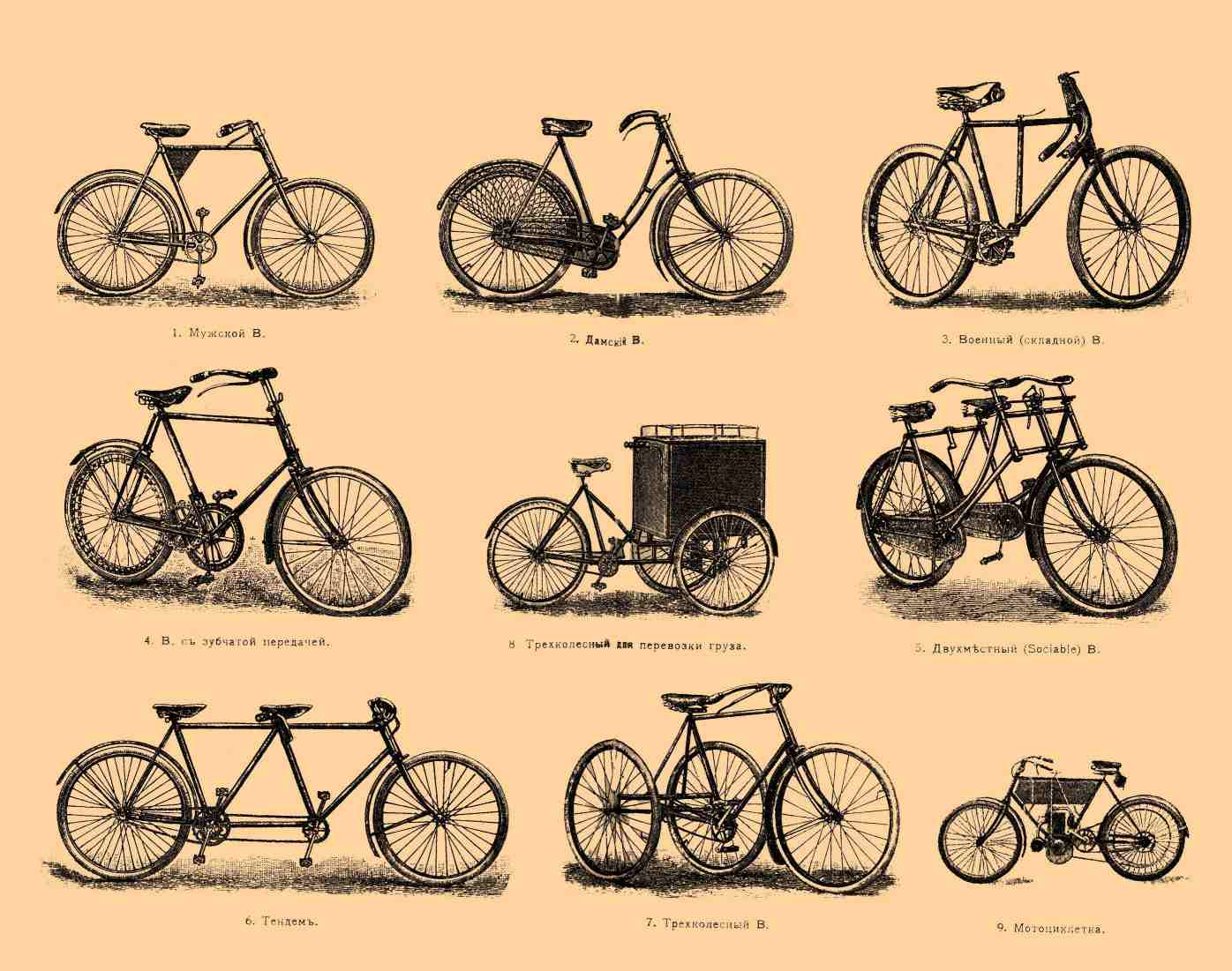 Public domain, via Wikimedia Commons