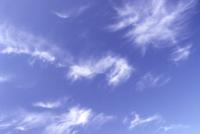 Marestail shows moisture at high altitude, sig...