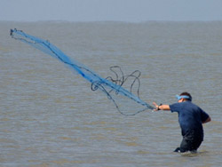 Fishing with a net Downloaded from : Photos an...