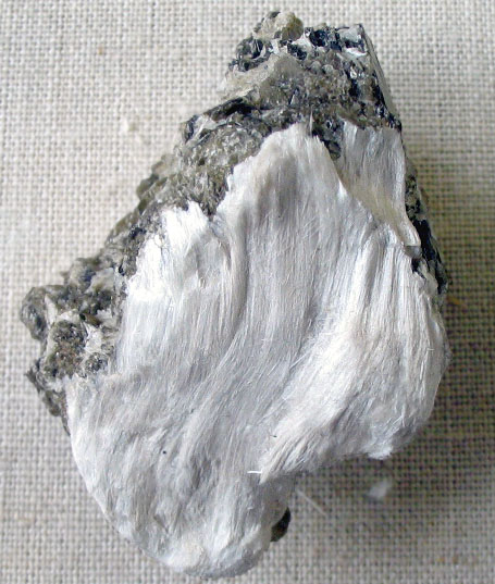 Image Result For Asbestos Cancer Mesotheliomaa
