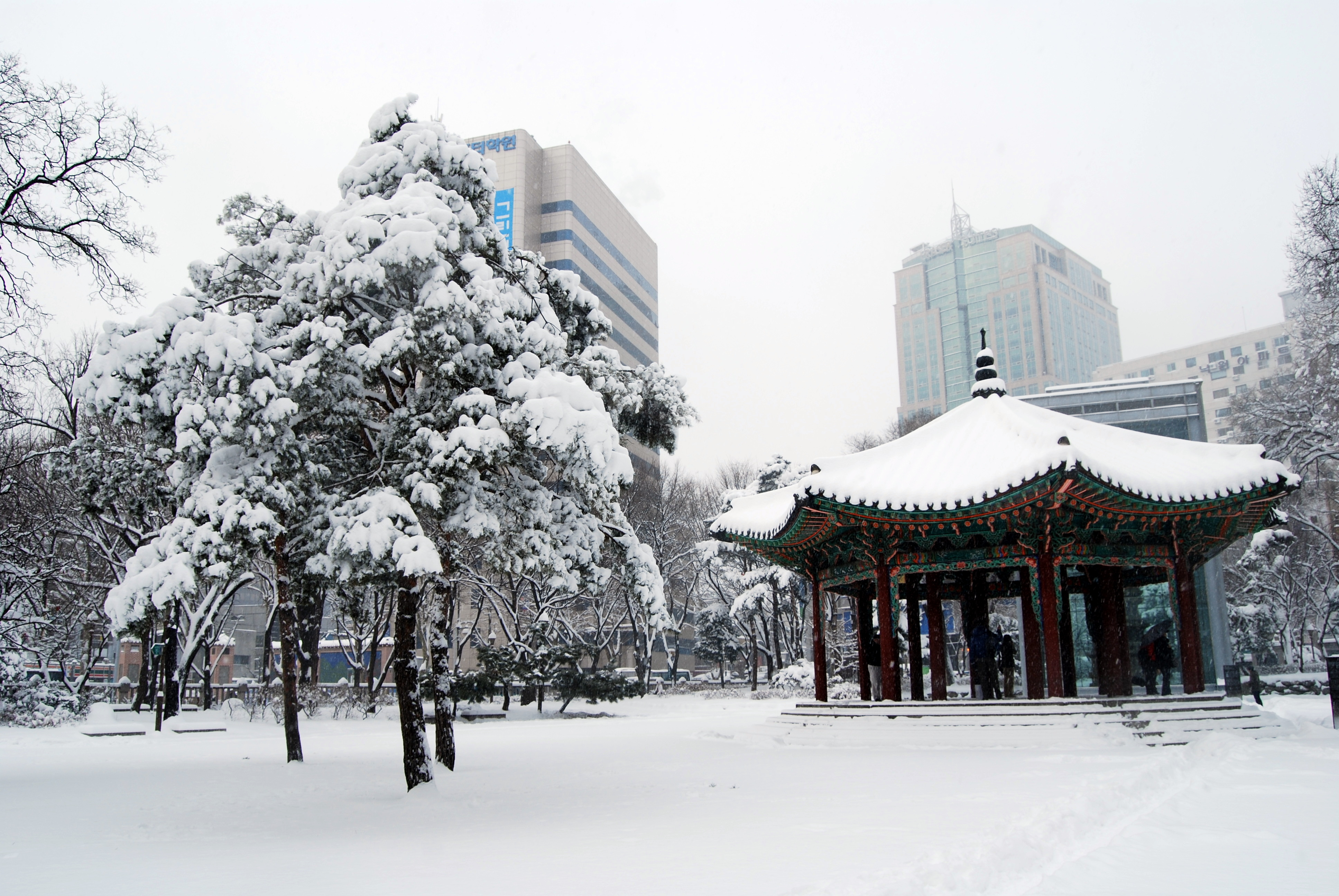 FileHeavy snow in Seoul 4 Jan 2010  Covered the park