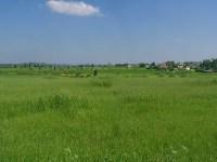File:A field outside Gedera.jpg - Wikimedia Commons