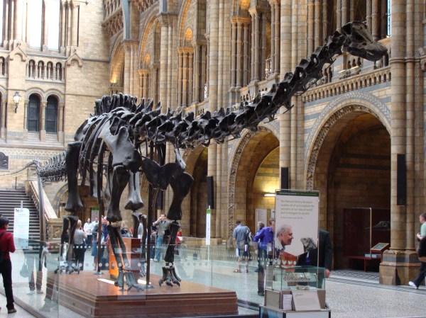 Carnegie Transatlantic Dinosaur Eviction Notice In Present