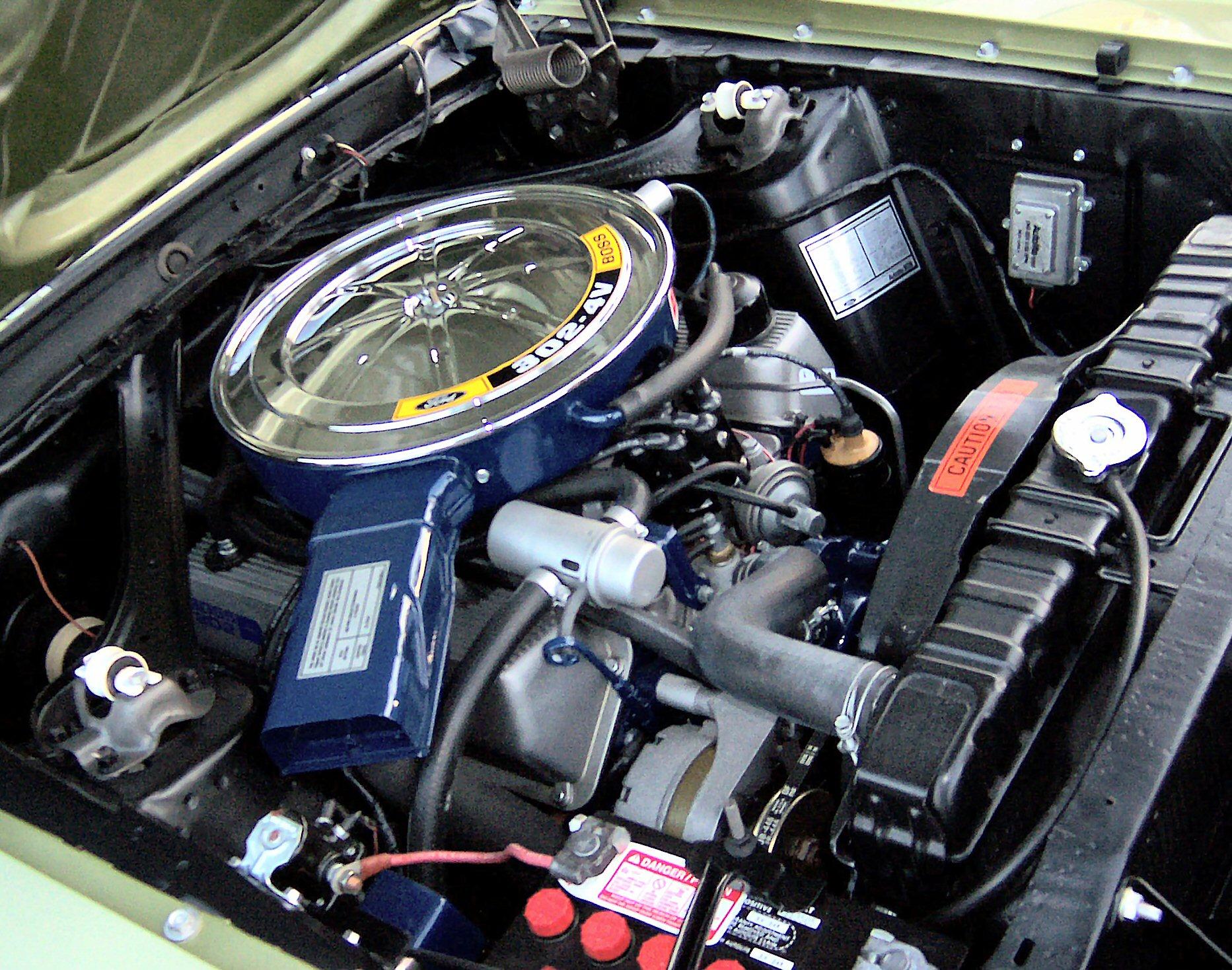 1981 Motor 302 Chevy