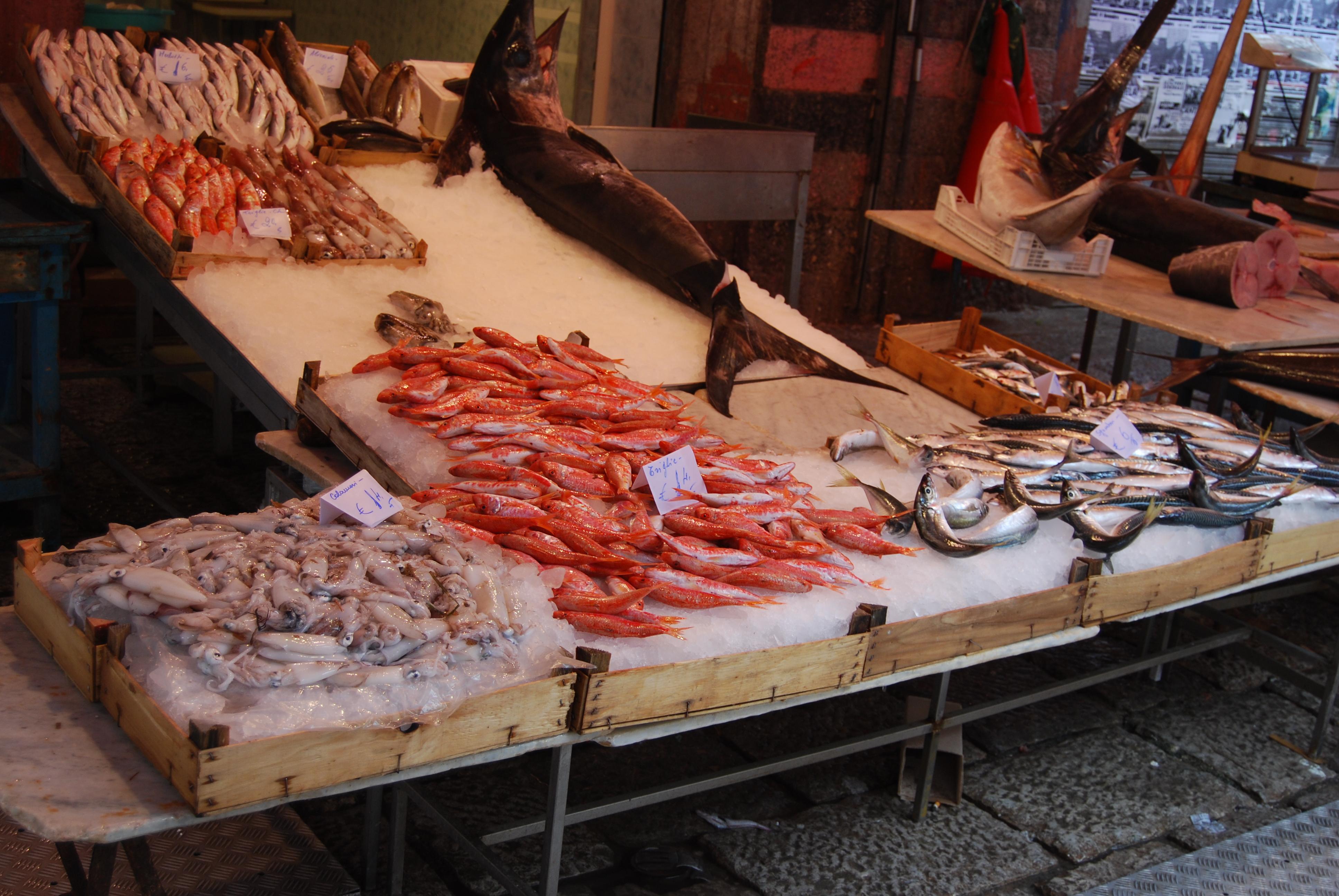 Fish Market Bay Area