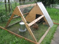 Small coop for keeping 3