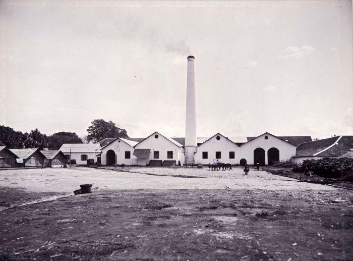 pabrik gula kalibagor dulu