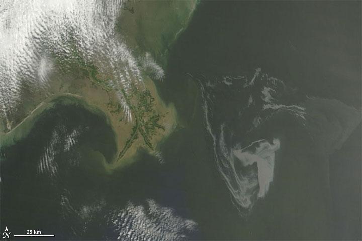 Ölteppich im Golf von Mexiko