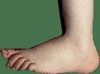 Python-Foot
