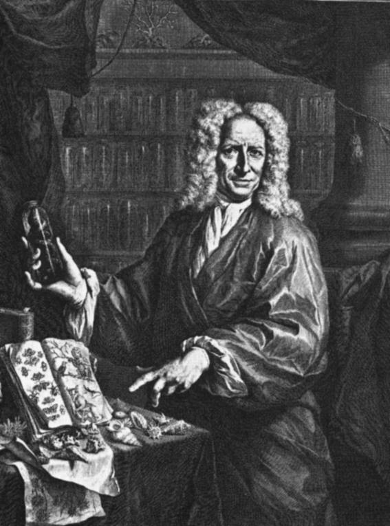 Albertus Seba  Wikimedia Commons
