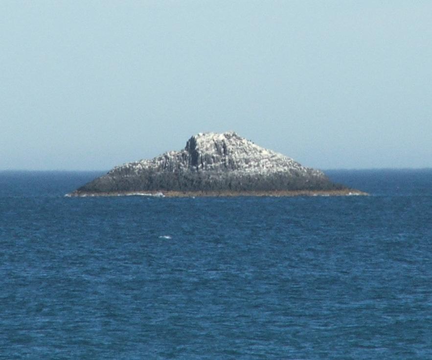 White Island Otago  Wikipedia