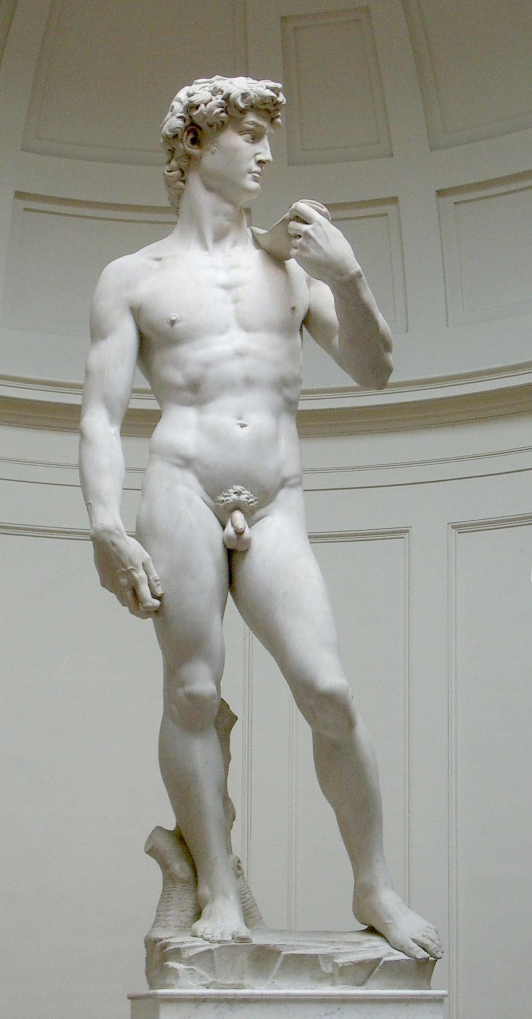 el David, en la Galleria de la Accademia (foto de Wikipedia)
