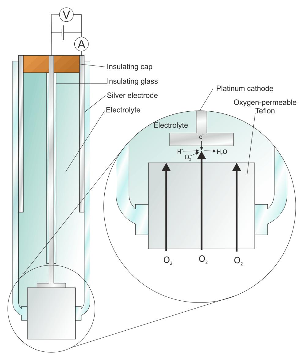 medium resolution of clark electrode