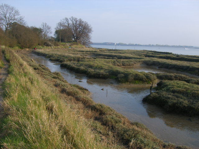 File:Mudflats at River Crouch estuary - geograph.org.uk - 395918.jpg