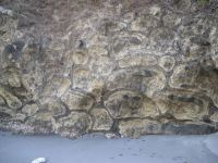 File:Pillow Lava in Bonin Islands.jpg