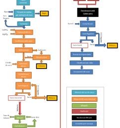 file diagrama de flux sucre de canya png [ 1304 x 1765 Pixel ]