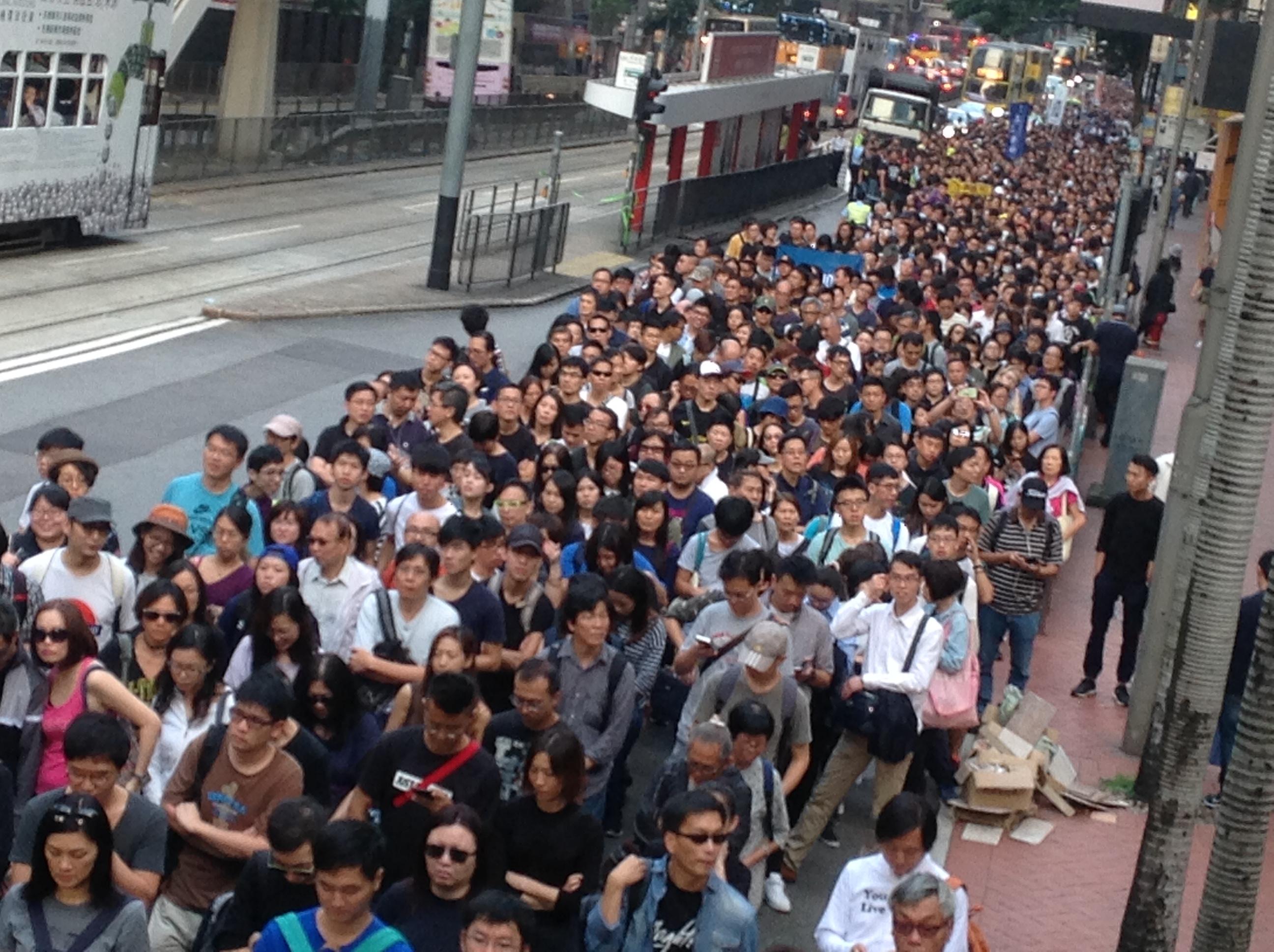 File:香港各界發起反人大釋法大遊行和集會 25.jpg - Wikimedia Commons