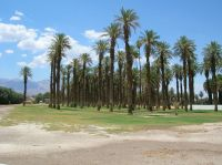 Furnace Creek Inn and Ranch Resort - Wikipedia, la ...