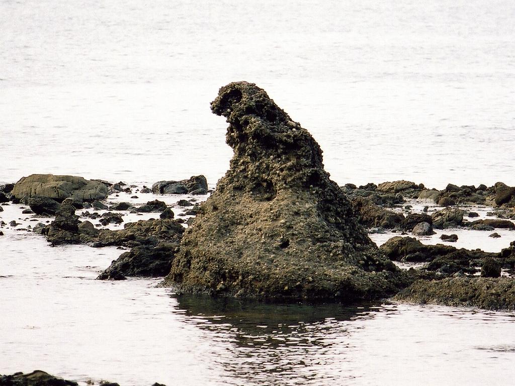 Shhhhh.....Godzilla hides as Zen Rock