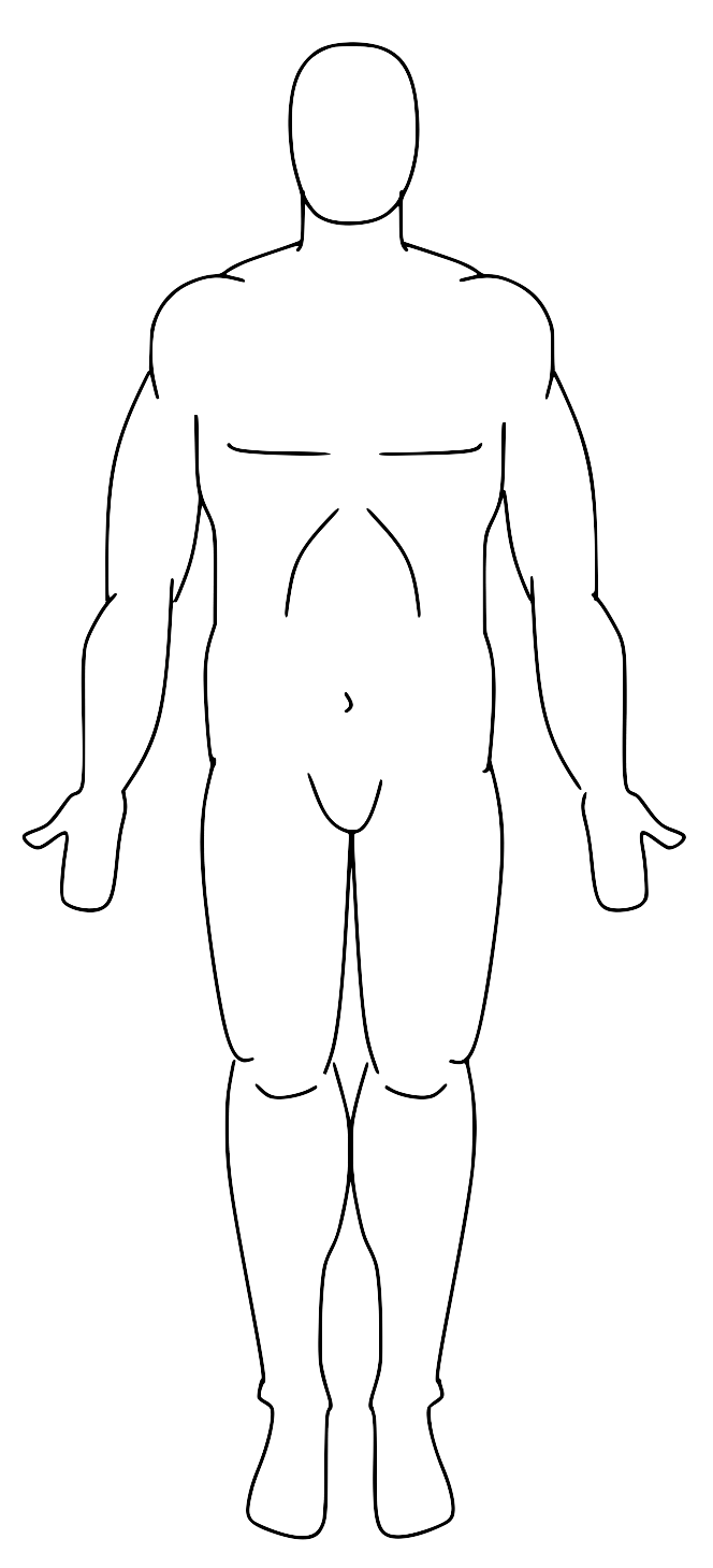 Anatomy Body Regions Diagram, Anatomy, Free Engine Image