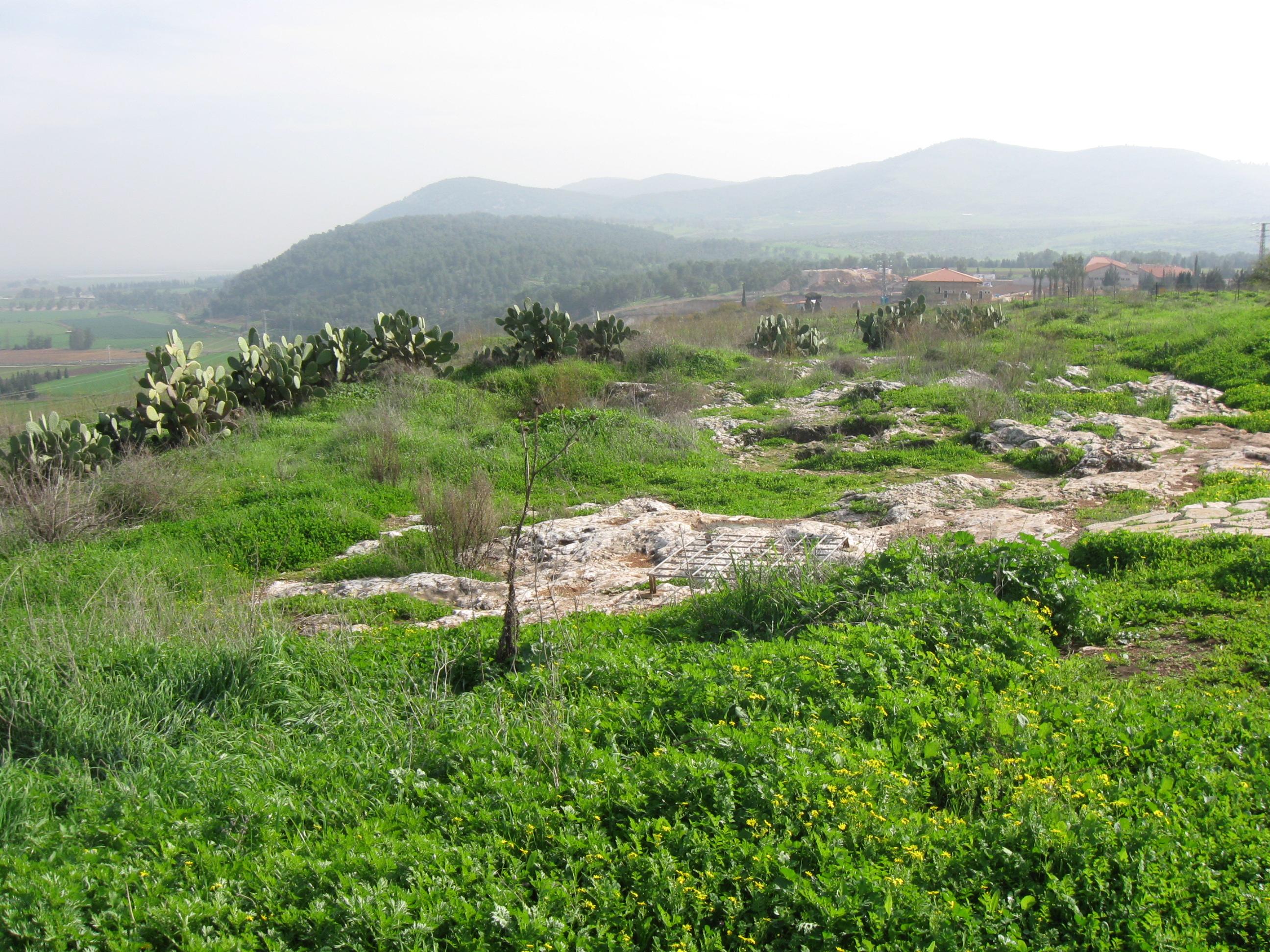 Tel Jezreel, looking east towards Mt. Gilboa.