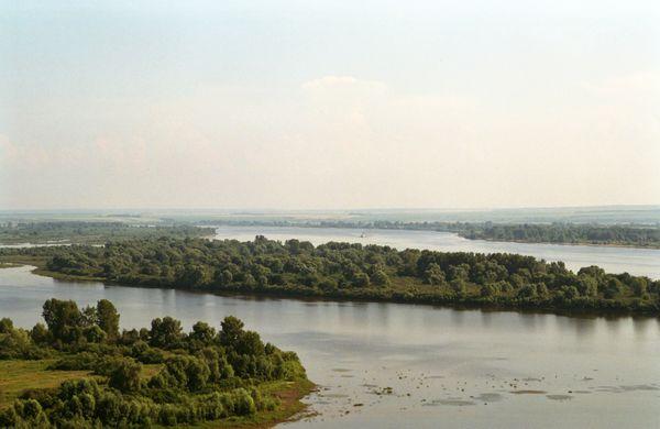 Kama affluente del Volga  Wikipedia