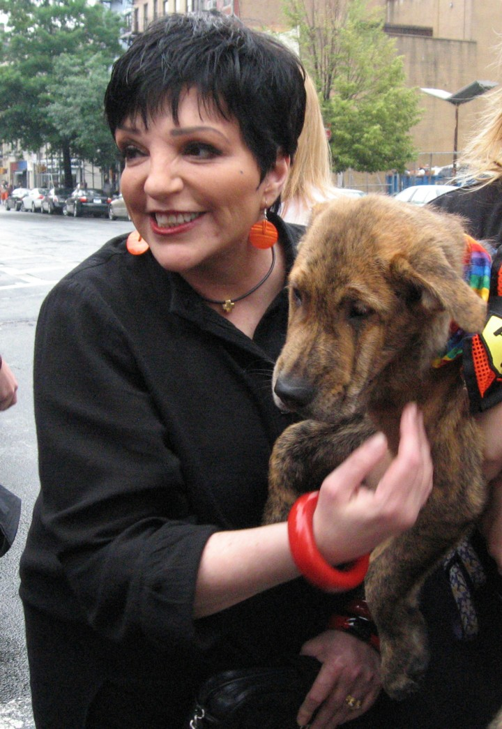 Liza Minnelli judges a pet contest in the West...