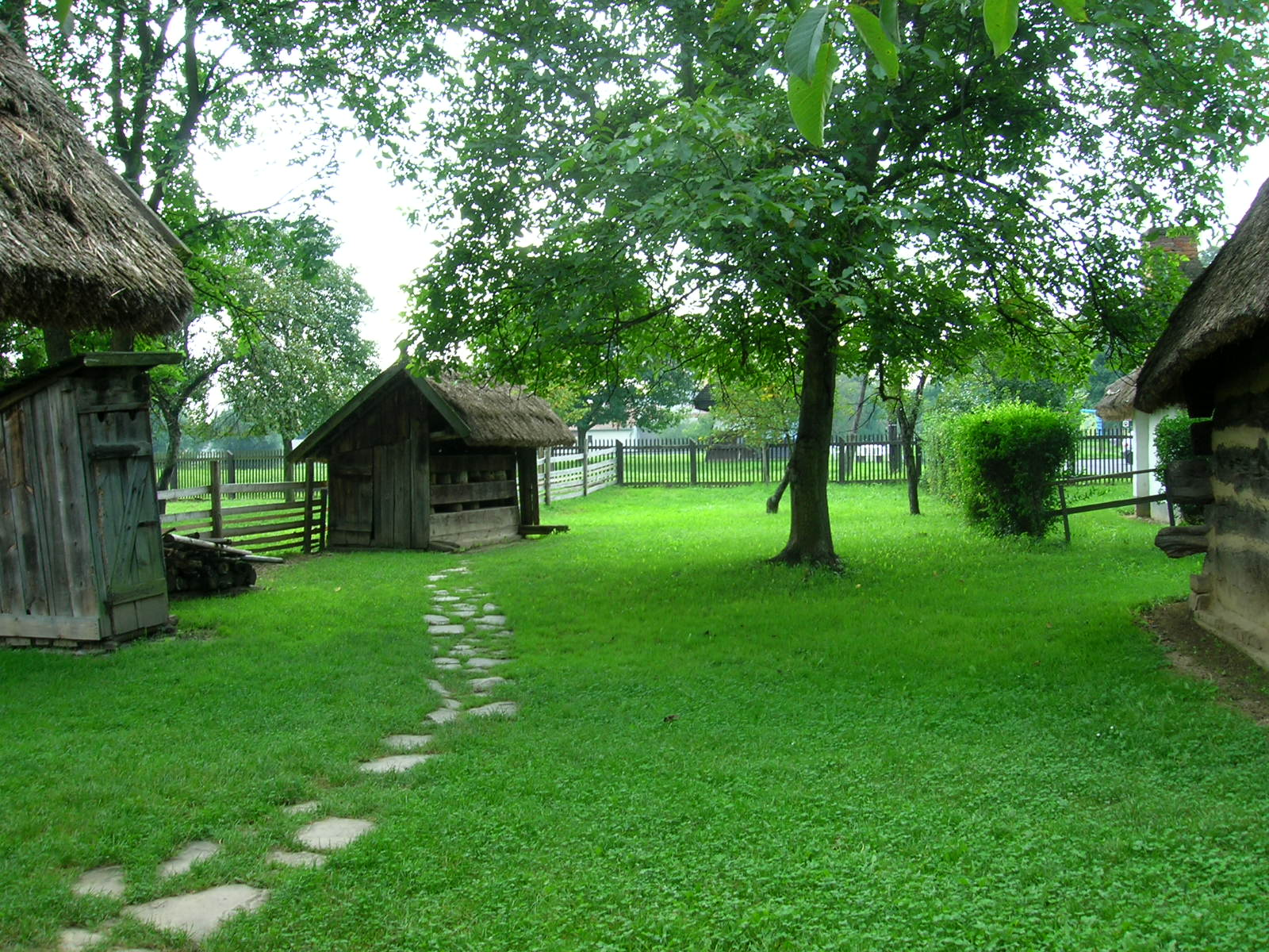 Filegocsej Village House Backyardjpg