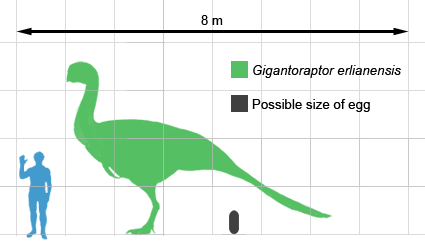 https://i0.wp.com/upload.wikimedia.org/wikipedia/commons/e/e3/Gigantoraptor_size.png?resize=425%2C244&ssl=1