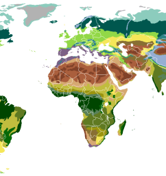 diagram of the temperate forest [ 1385 x 622 Pixel ]