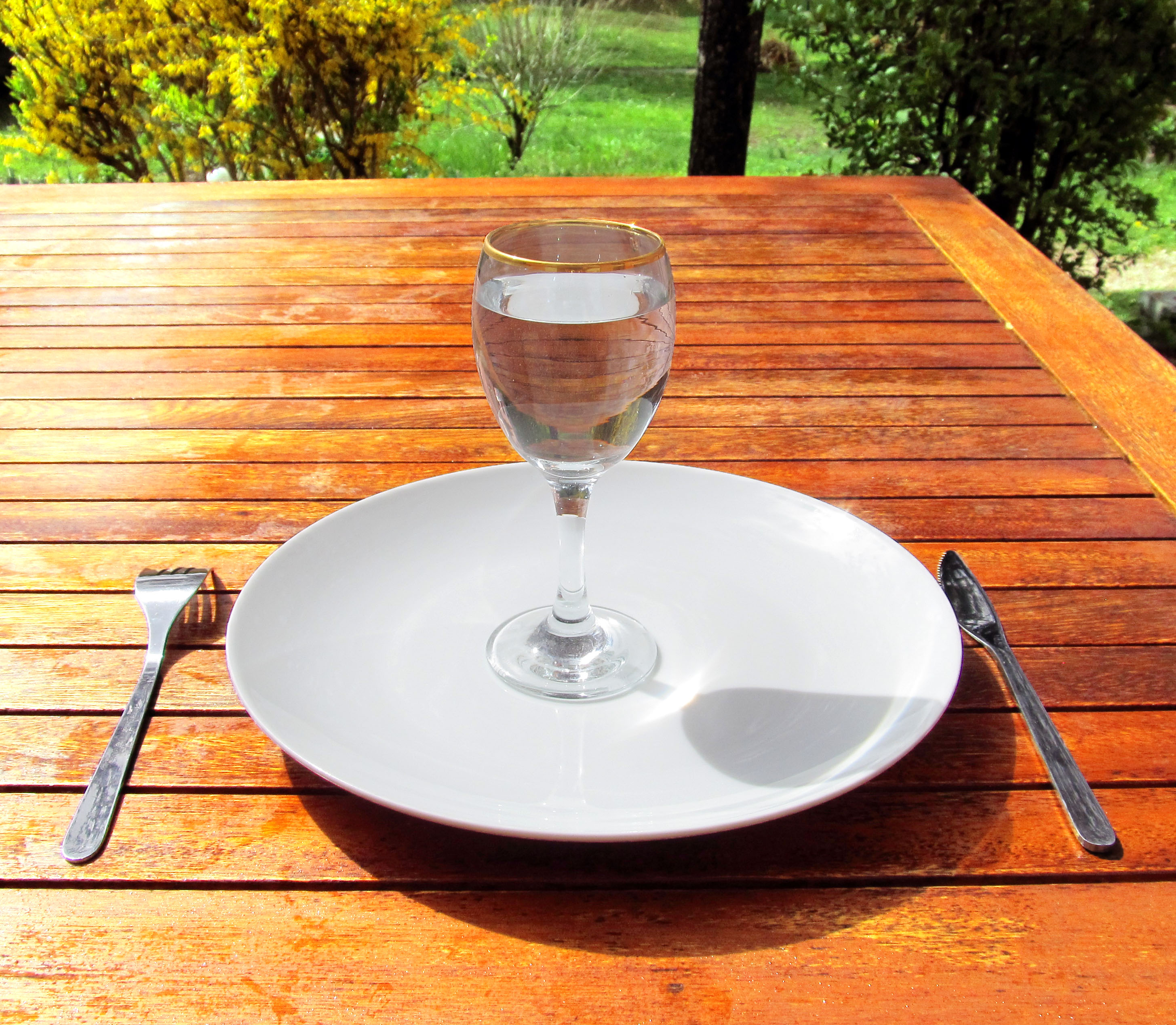 https://i0.wp.com/upload.wikimedia.org/wikipedia/commons/e/e5/Fasting_4-Fasting-a-glass-of-water-on-an-empty-plate.jpg