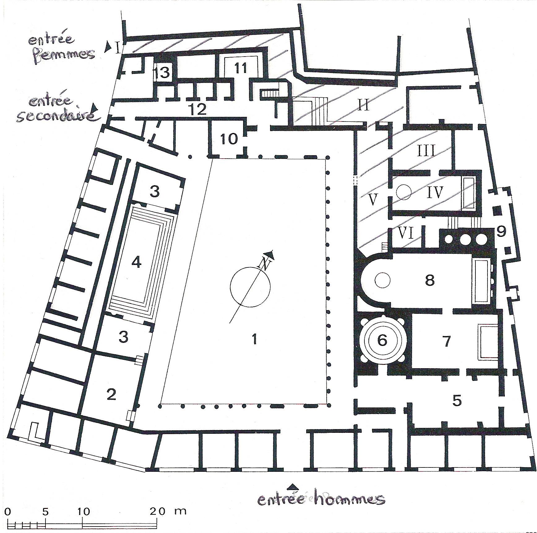 Roman Forum Pompeii   Wiring Diagram Database