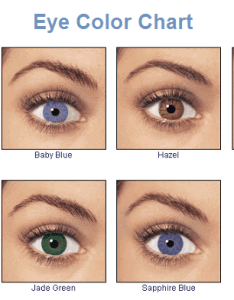 Https uploadmedia wikipedia commons   eye color chart by ygraphg also the best shadows for your  ihoot rh iuniversityprep