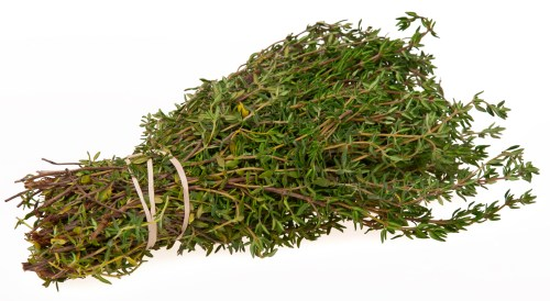 small resolution of rosemary herb diagram