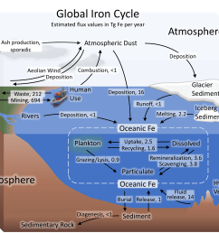 diagram of the carbon and nitrogen cycle [ 4320 x 3072 Pixel ]