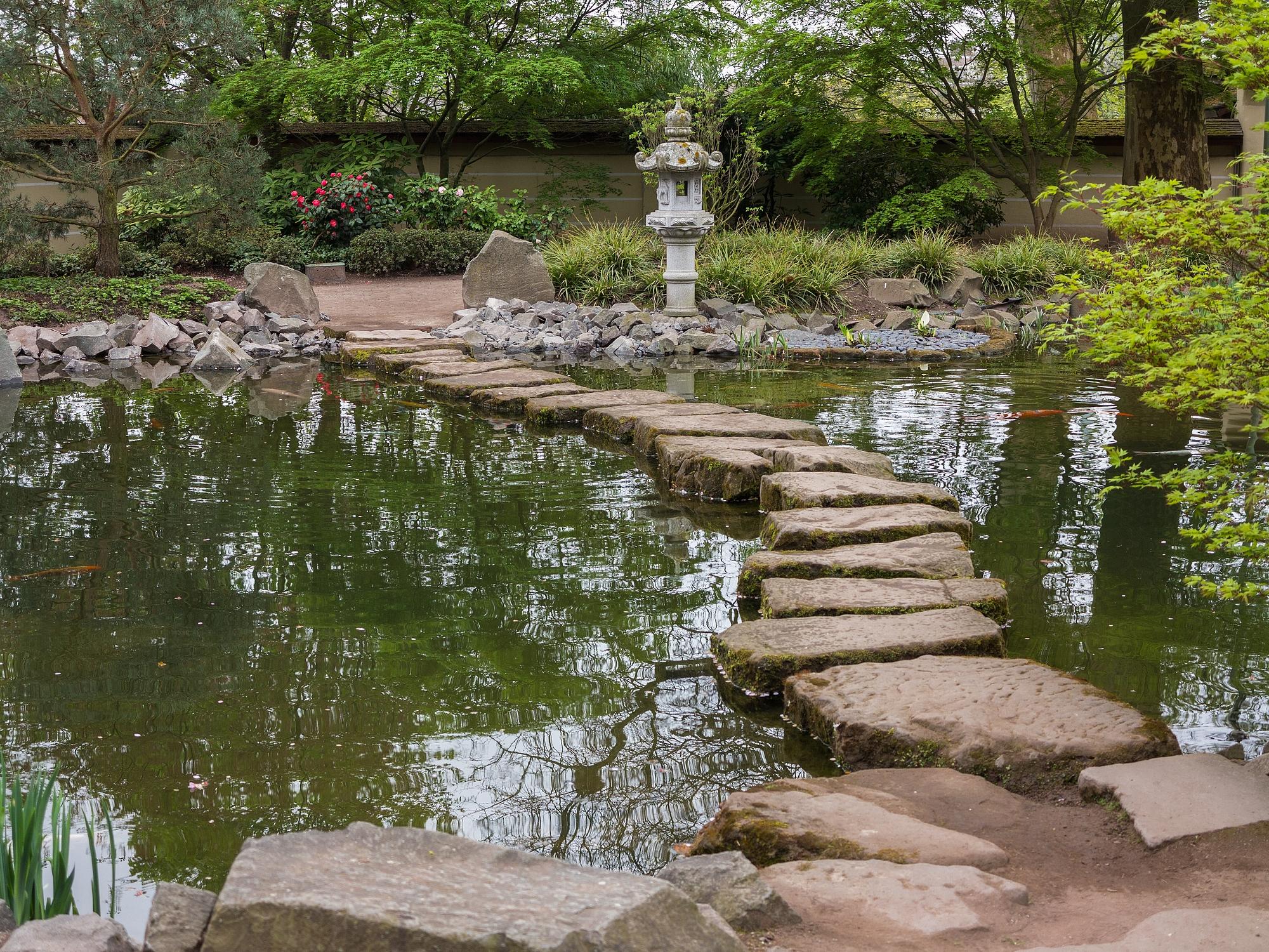 Trittsteine Garten Explore Hashtag Trittsteine Instagram Photos