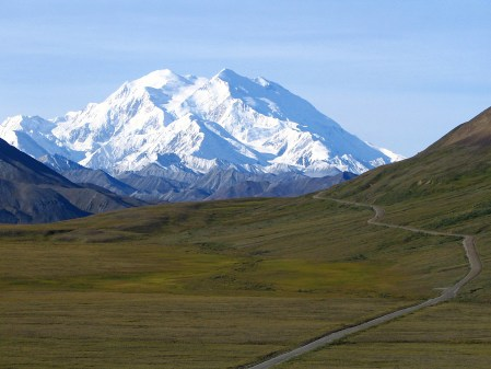 Image result for Visit Mount McKinley at Denali National Park