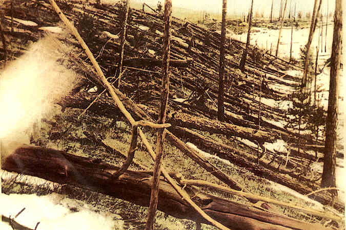Trees flattened by the explosion at Tunguska, Siberia in 1908