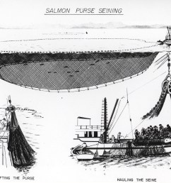 file diagram of salmon purse seining jpg [ 3820 x 2980 Pixel ]