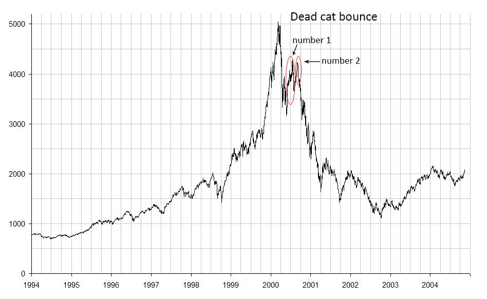 Dead cat bounce  Wikipedia