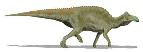 https://i0.wp.com/upload.wikimedia.org/wikipedia/commons/f/f0/Edmontosaurus_BW.jpg?resize=500%2C184&ssl=1