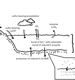 file sulfur cycle cartoon with cas inset png [ 2447 x 1083 Pixel ]