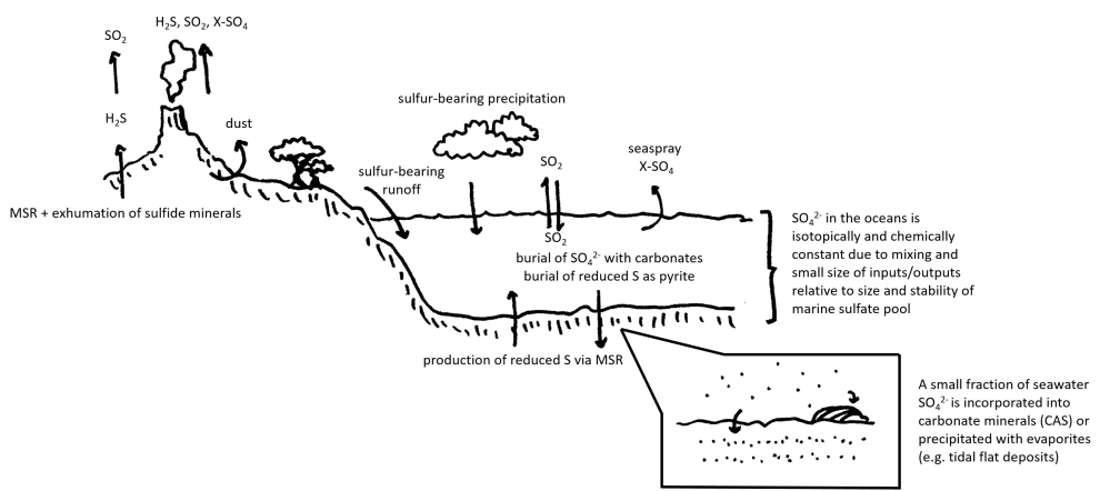medium resolution of file sulfur cycle cartoon with cas inset png